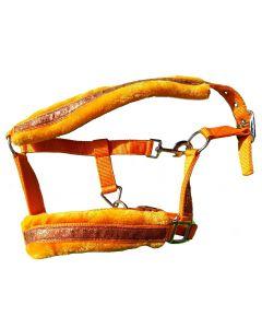 HB Glitter & Glamour halster-Licht oranje-Shetlander