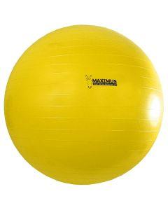 Maximus Power Play Ball 100cm